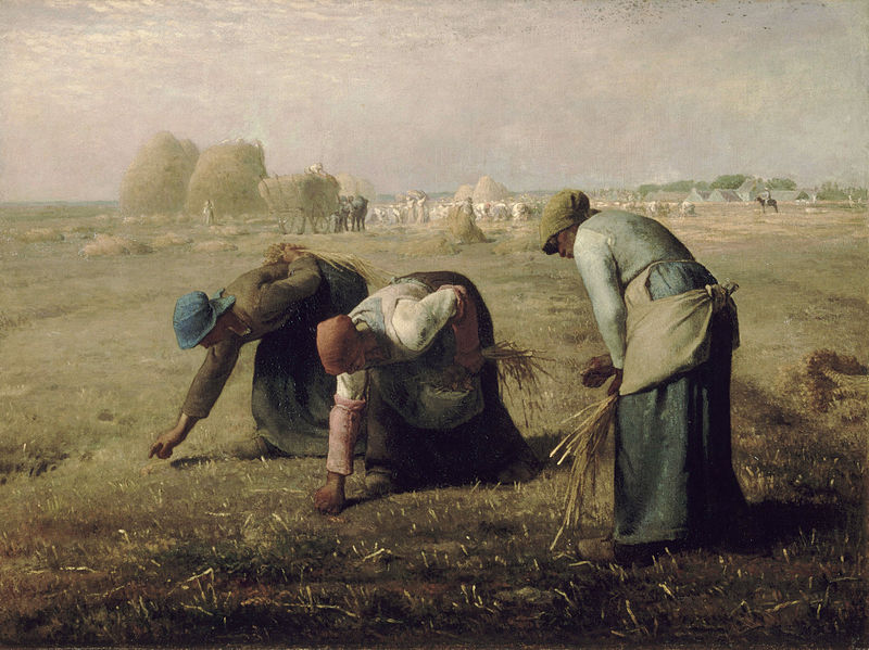 Looking at Gleaning